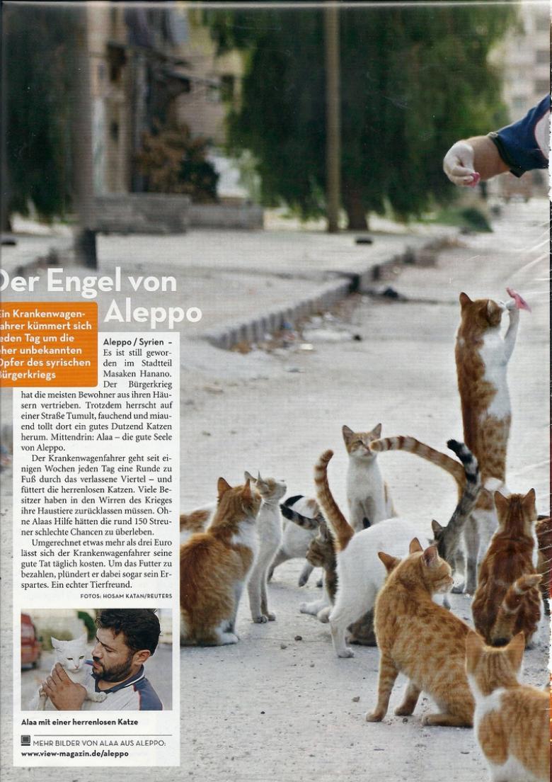 Artikel im Magazin View