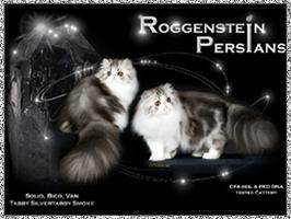 Roggenstein