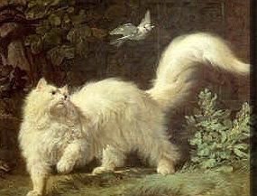 Jean Jacques Bachelier (1724 - 1806)